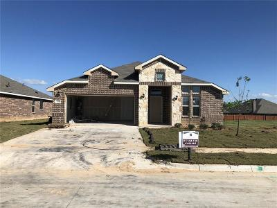 Weatherford Single Family Home For Sale: 2529 Silver Fox Trail