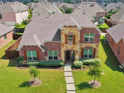 Allen Single Family Home For Sale: 1045 Enchanted Rock Drive