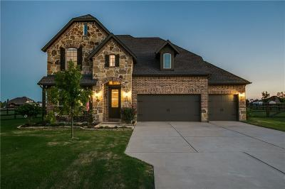 McKinney Single Family Home For Sale: 225 Meadow Crossing Drive