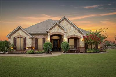 Haslet, Justin Single Family Home For Sale: 13801 Megan Drive