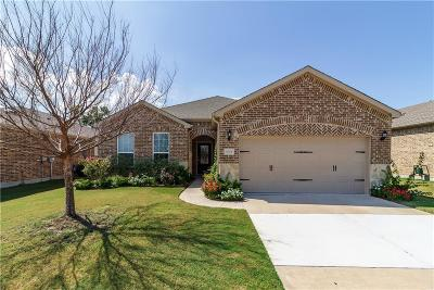 Frisco Single Family Home For Sale: 6329 Paragon Drive