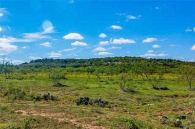 Brownwood Farm & Ranch For Sale: 1529 County Road 134