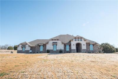 Parker County Single Family Home For Sale: 119 Morgan Meadows Drive