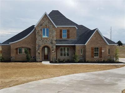 Midlothian Single Family Home For Sale: 860 Reese Drive