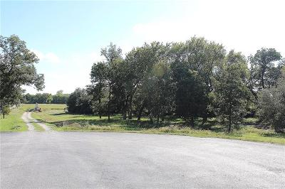 Parker County, Tarrant County, Wise County Residential Lots & Land For Sale: 4401 La Cantera Court