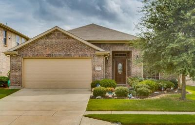 Little Elm Single Family Home For Sale: 1313 Catbird Drive