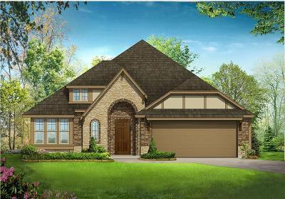 McKinney Single Family Home For Sale: 904 Putman Drive
