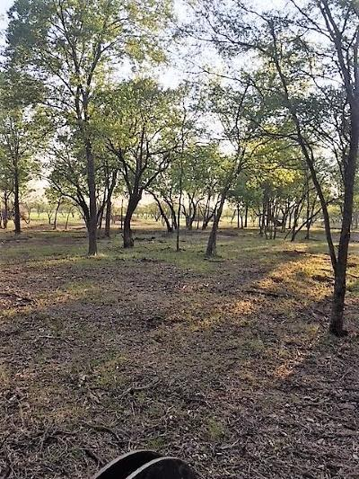 Rockwall, Royse City, Fate, Heath, Mclendon Chisholm Residential Lots & Land For Sale: 0001 Fm 548