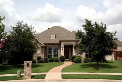 Allen Single Family Home For Sale: 2004 Candlewyck Crossing