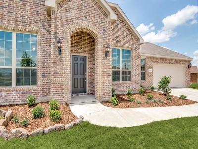Rhome Single Family Home For Sale: 12424 Shine Avenue