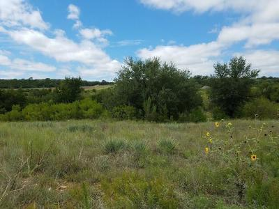 Possum Kingdom Lake Residential Lots & Land For Sale: Lt 510 Canyon Wren Loop