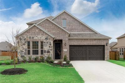 Little Elm Single Family Home For Sale: 13604 Canals Drive
