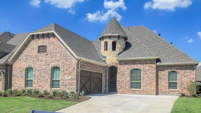 Little Elm Single Family Home For Sale: 717 Patio Street