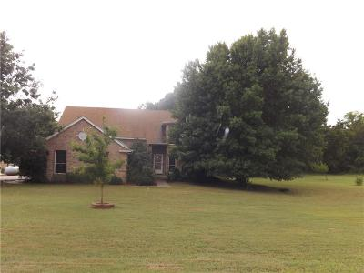 Wise County Single Family Home For Sale: 147 River Road