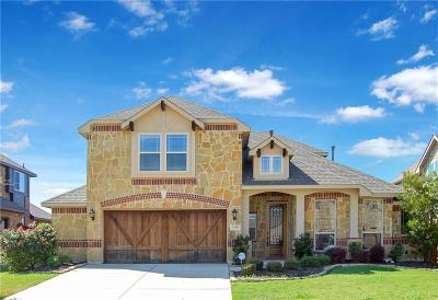 Grand Prairie Single Family Home For Sale: 7319 Brisa Road