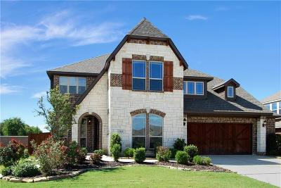 Grand Prairie Single Family Home For Sale: 7323 Brisa Road