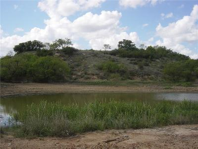 Young County Farm & Ranch For Sale: 0000 Fm 1974