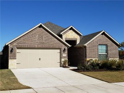 Denton Single Family Home For Sale: 3929 Madison Lane