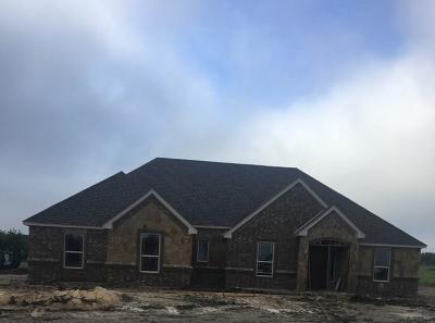 Springtown Single Family Home For Sale: 2032 Jo Jones Lane