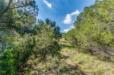 Gordon Farm & Ranch For Sale: Tbd-7 Lake Creek Rd