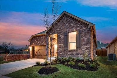 Frisco Single Family Home For Sale: 8118 Rabbit Drive