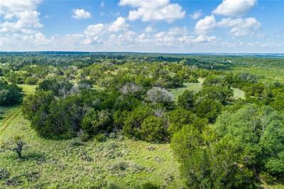Palo Pinto County Farm & Ranch For Sale: Tbd-49 Lake Creek Rd