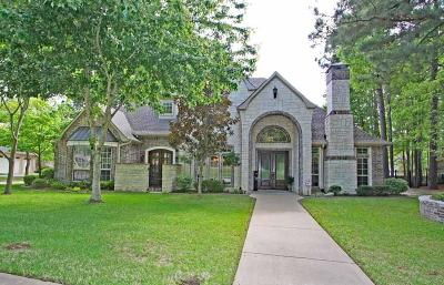 Tyler Single Family Home For Sale: 4411 Lazy Creek Drive