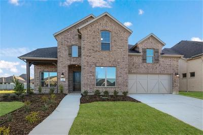 Argyle Single Family Home For Sale: 1121 10th Street