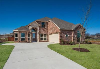Waxahachie Single Family Home For Sale: 253 Pond Mills Drive