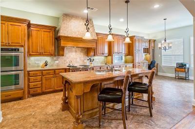 Allen Single Family Home For Sale: 1905 Nueces Drive