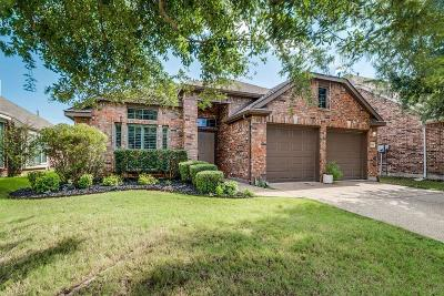Grand Prairie Single Family Home For Sale: 2759 Waterway Drive