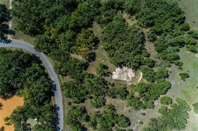 Springtown Residential Lots & Land For Sale: 278 R And R Drive