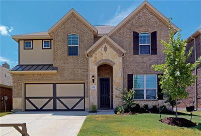 Dallas, Fort Worth Single Family Home For Sale: 2416 Flowing Springs Drive