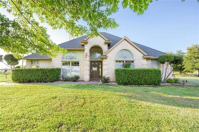 Granbury Single Family Home Active Contingent: 2910 X A Meyer Road