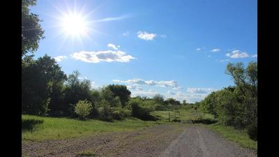Wise County Farm & Ranch For Sale: 678 S Fm 1655 - A