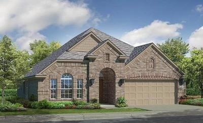 Lewisville Single Family Home For Sale: 2404 Long Meadow Way