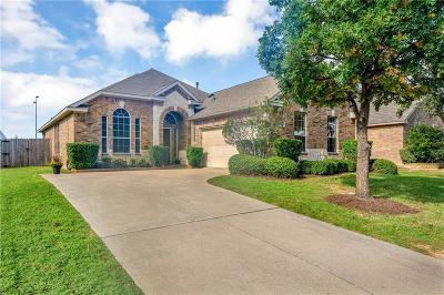 Allen Single Family Home For Sale: 1007 Rushmore Drive