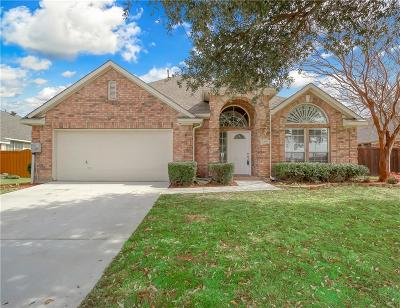 Lewisville Single Family Home For Sale: 2109 Oak View Place