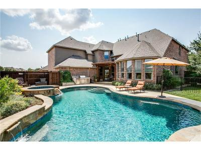 Allen Single Family Home For Sale: 1324 Comal Drive