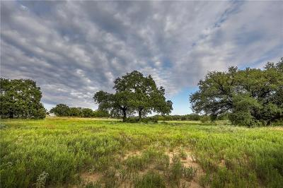 Parker County Farm & Ranch For Sale: 3457 Bethel Road