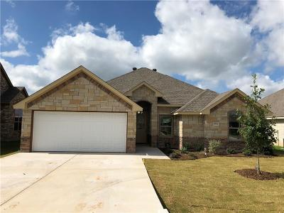 Granbury Single Family Home For Sale: 3202 Main