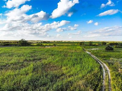 Perrin Farm & Ranch For Sale: 281 S Hwy 281 Highway