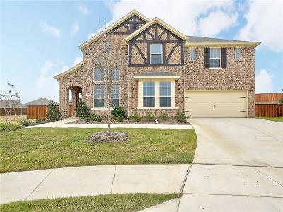 Single Family Home For Sale: 3308 Plainview Lane