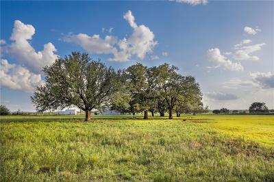 Mineral Wells Farm & Ranch For Sale: 0000 State Highway 254