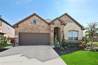 Fort Worth Single Family Home For Sale: 3000 Bella Lago Drive