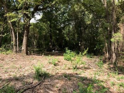 Athens, Kemp Residential Lots & Land For Sale: 832 Locust Drive