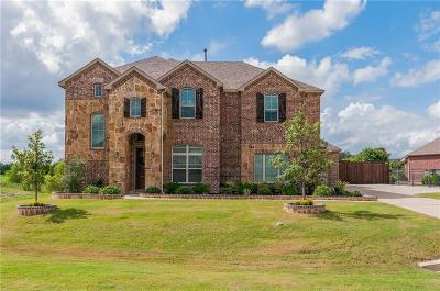 Fort Worth Single Family Home For Sale: 11341 Mesa Crossing Drive