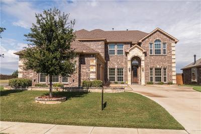 Tarrant County Single Family Home For Sale: 2844 Arenoso