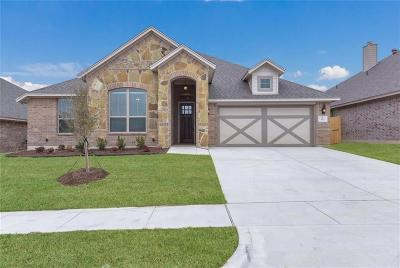 Aledo Single Family Home For Sale: 512 Sagebrush Court
