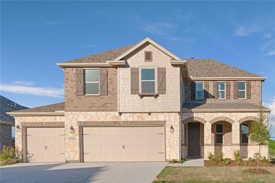 Fort Worth Single Family Home For Sale: 8900 Bison Creek Drive